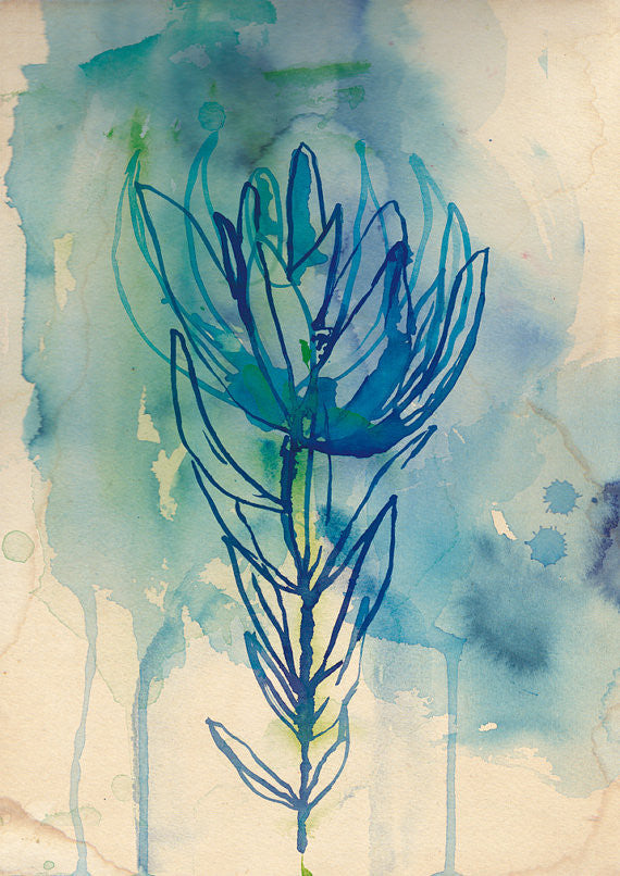 A3 Print 'Blue Wash Protea'