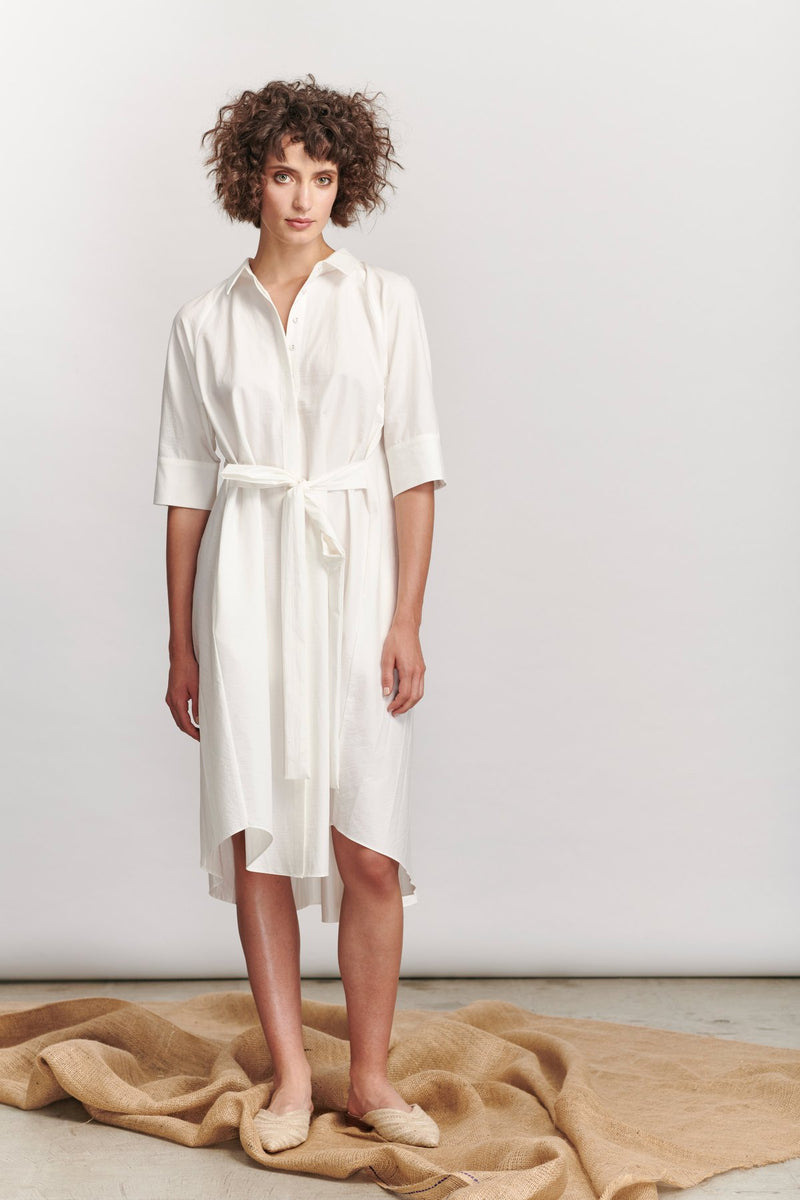 Avignon Pleat Dress