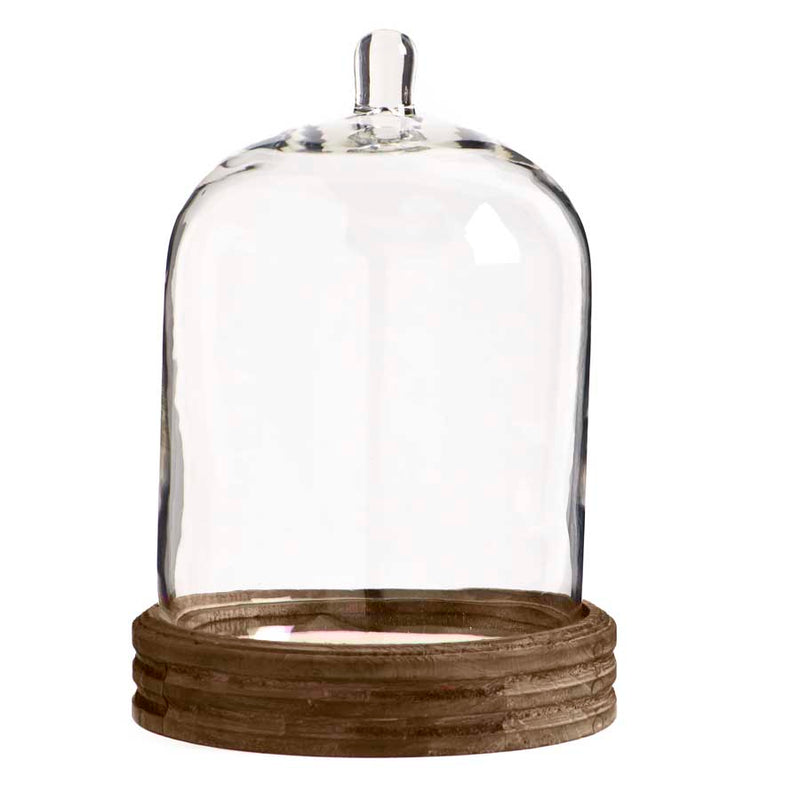 "11.5"" Glass Cloche with Knob Top"