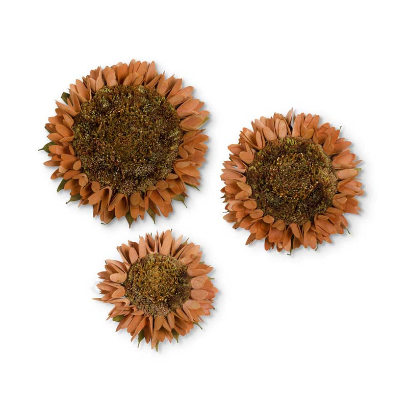 Rust Shaved Sunflowers