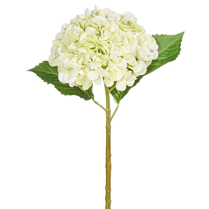 "20"" Real Touch Light Green Hydrangea"
