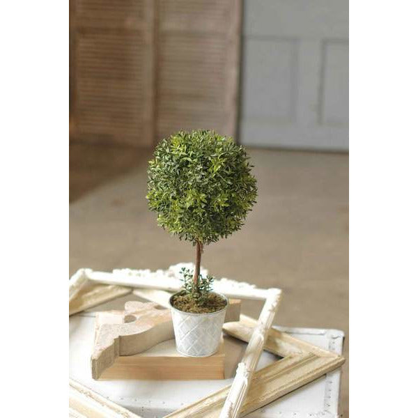 "18"" Boxwood Topiary"
