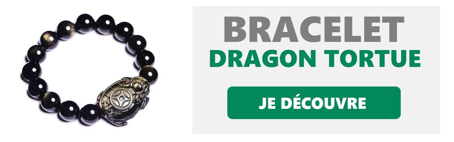 bracelet dragon tortue