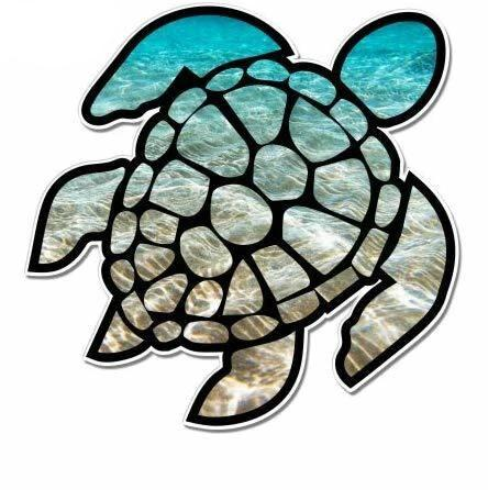 Sticker Moto Tortue - Dégradé