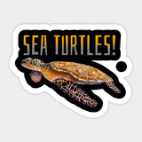 Autocollant Voiture Tortue - Sea Turtle