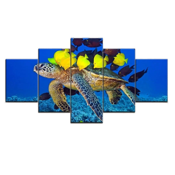 Tableau Tortue - Calinades (5pcs)