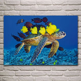 Tableau Tortue - Calinades