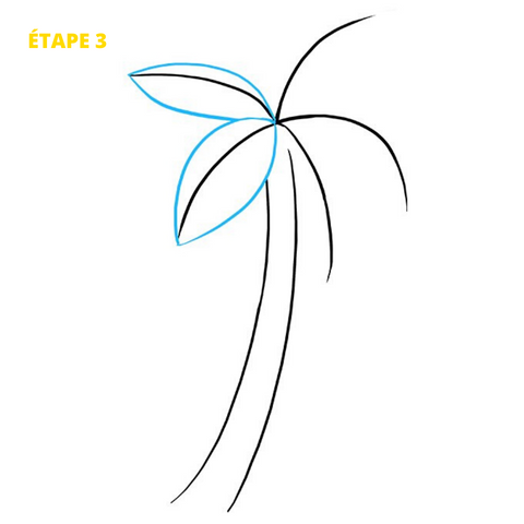 Dessin Palmier Dessin Palmier Plage Palm Tree Clip Art Palm Tree Drawing Palm Trees Painting