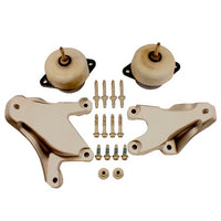 5.0L COYOTE MOTOR MOUNT KIT - Ford Performance
