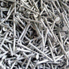 1kg bag of Galvanised Round Wire Nails