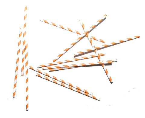 Orange Stripe Paper Straws (Set of 25)