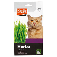 Karlie Flamingo Cat Grass