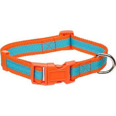 Planet Petco Adjustable Collar Blue & Orange M