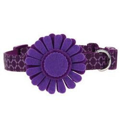 Martha Stewart Pets™ Flower Bone Collar XS