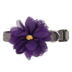 Martha Stewart Pets™ Purple Flower Collar