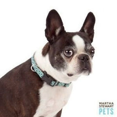 Martha Stewart Pets™ Blue Bone Print Collar