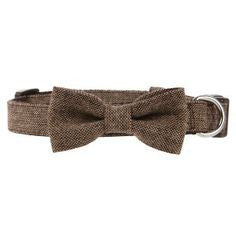 Martha Stewart Pets™ Bow Tweed Collar Tan