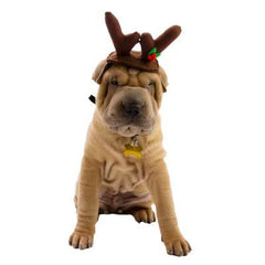 Top Paw Reindeer Head Wear