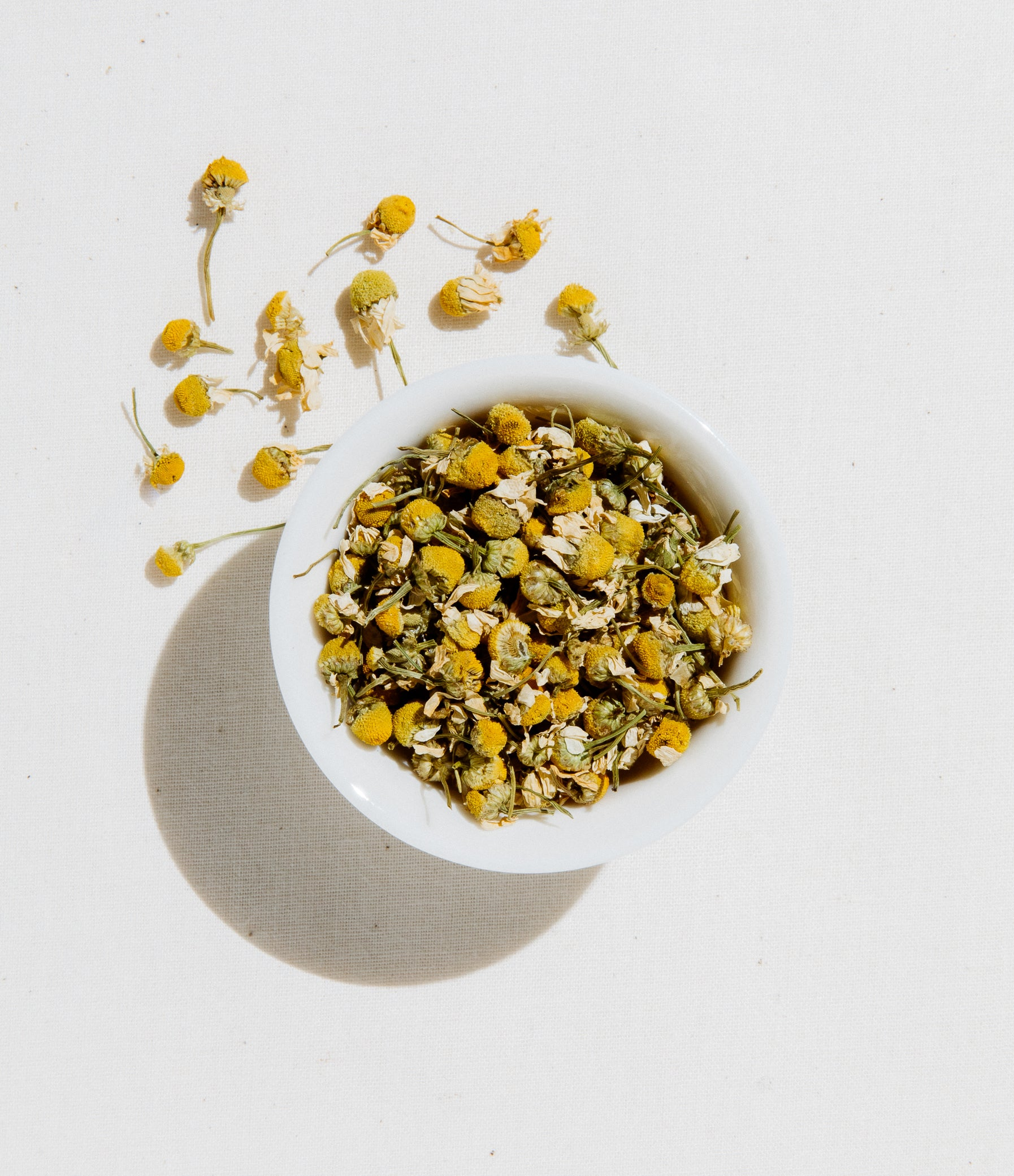 Egyptian Chamomile Tea Loose Leaf 4 oz Zip Pouch by Art of Tea