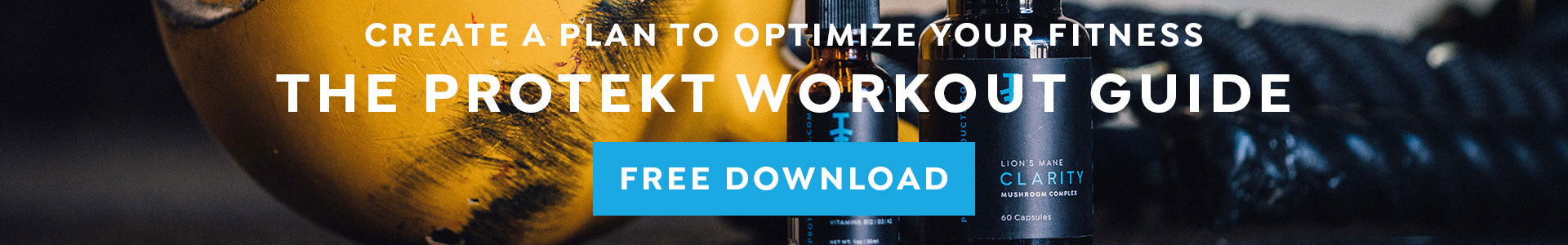 Download The Protekt Workout Guide