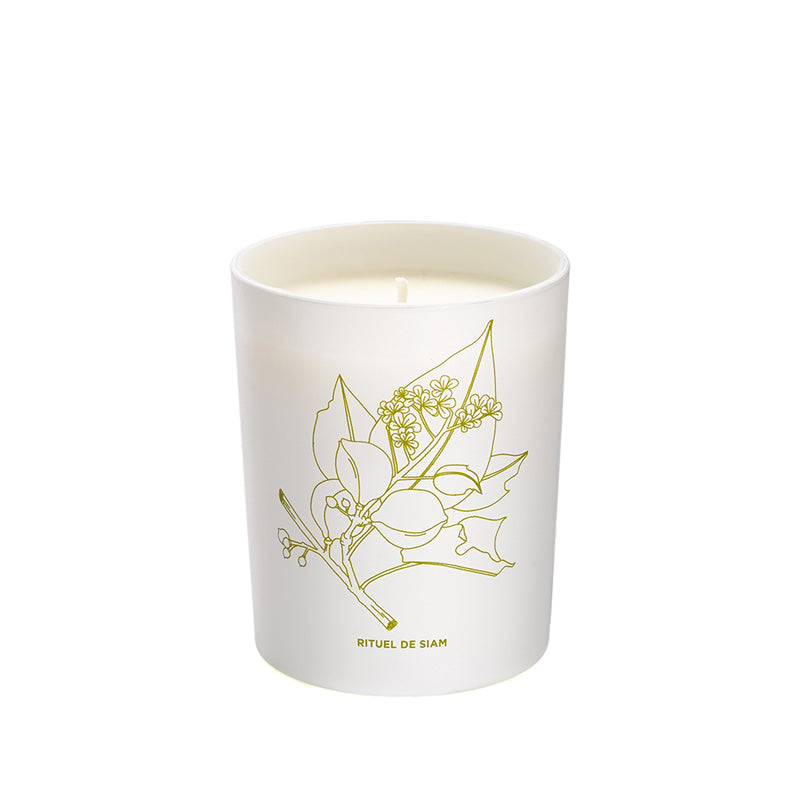 Comforting Phyto-Aromatic Candle of Siam (180g)