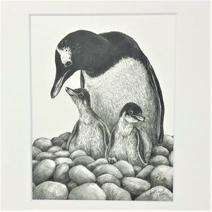 Gentoo & Chicks 10x8 Mounted Print