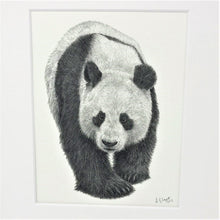 Load image into Gallery viewer, Yang Guang 10x8 Mounted Print