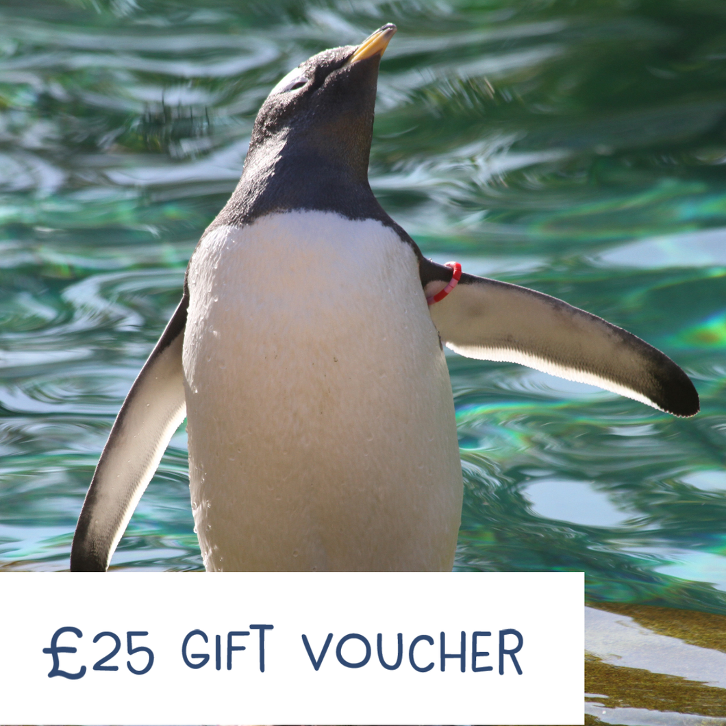 Edinburgh Zoo Gift Voucher - £25