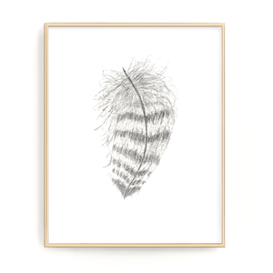 Striped Watercolor Feather, Feather Print, Boho Feather Art, Black & White Feather, Grey Decor - Emilie Taylor Art
