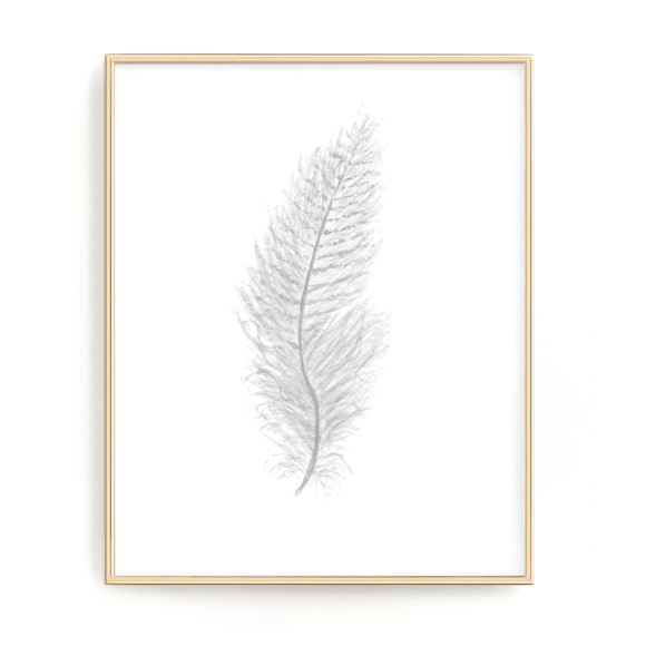 White Watercolor Feather, Feather Print, Grey Feather, Bird Feather, Grey Decor, Feather wall art - Emilie Taylor Art