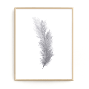 Gray Watercolor Feather Painting, Feather Print, Bird Feather, Home Decor, Grey Decor, Feather art - Emilie Taylor Art