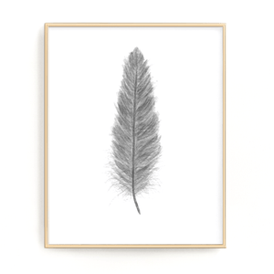 Dark Gray Watercolor Feather, Feather Print, Gray Feather decor - Emilie Taylor Art