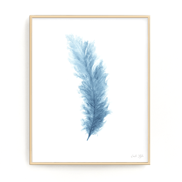 Colored Watercolor Feather Painting, Feather Print - Emilie Taylor Art