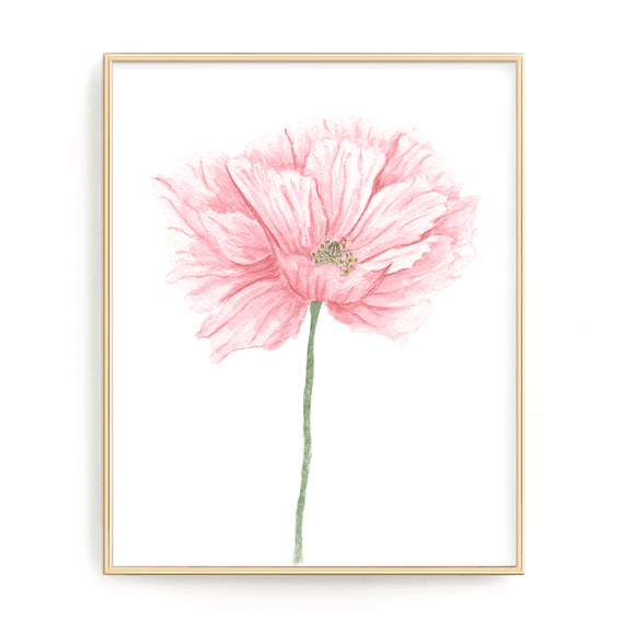 Pink Poppy Print, Watercolor Poppy Painting, Poppy Art, (Style2), Floral Print, Pink Poppy art - Emilie Taylor Art