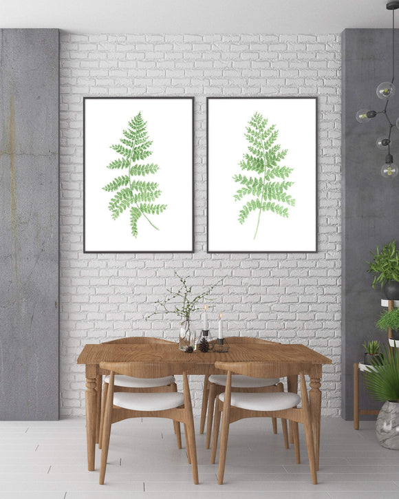 Watercolor Fern set of Prints, Watercolor Fern Paintings, Fern Art prints, Botanical art Prints, - Emilie Taylor Art
