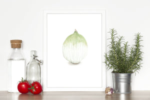 Watercolor Onion Painting, Kitchen Art, Vegetable Print, Onion Art, White onion, Garden Plant art - Emilie Taylor Art