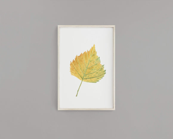 Watercolor Birch leaf Painting, Fall Decor, Leaf Print, Botanical Art, Birch Leaf, Birch Tree - Emilie Taylor Art