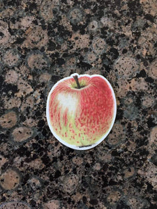 Apple Decal, Watercolor Apple Sticker, Apple Decal, Apple Sticker, Laptop Decal, Gift for Teachers - Emilie Taylor Art
