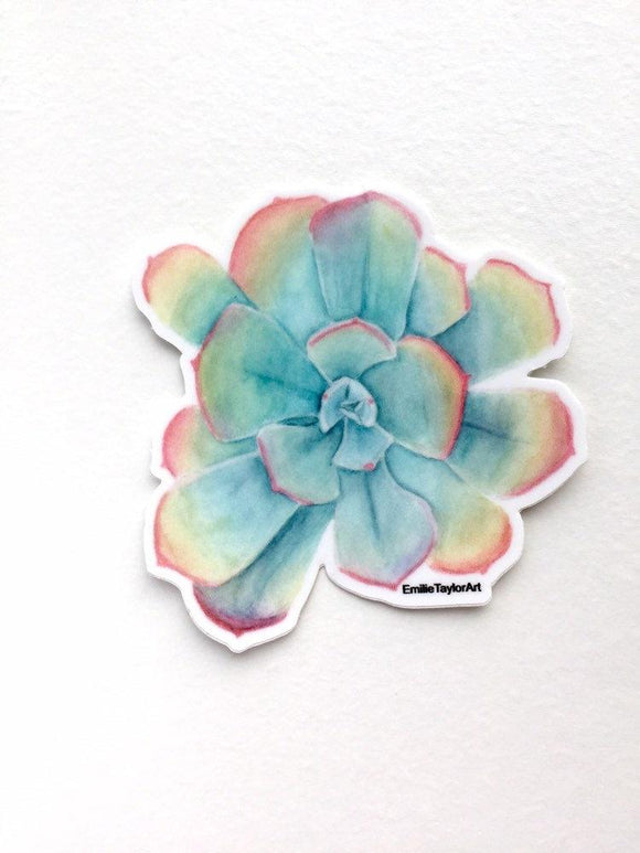 Succulent Decal, Watercolor Succulent Sticker, Succulent Decal, Rainbow Sticker, Pastel Succulent - Emilie Taylor Art