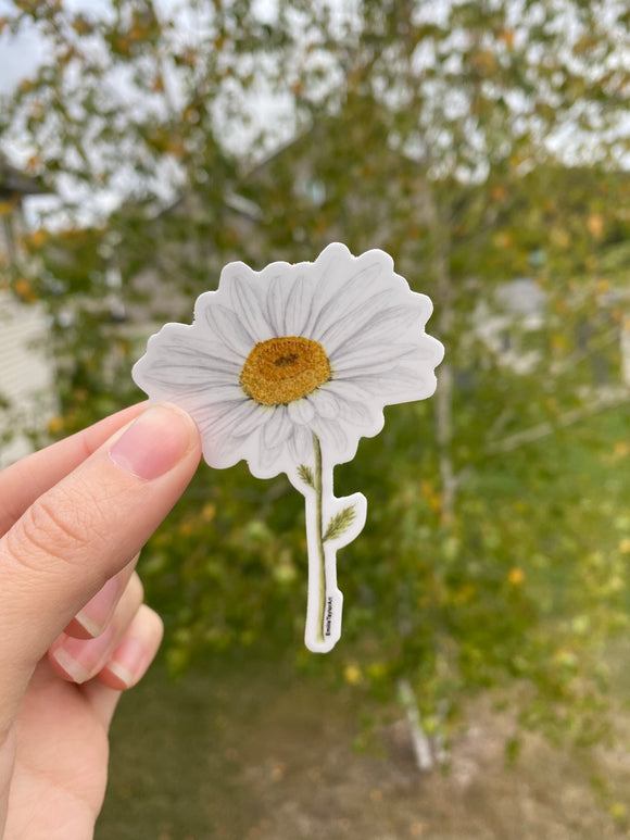 Daisy Decal, Watercolor Daisy Sticker, Mini Flower Decal, Flower Sticker