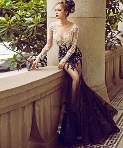 Stylish Lace Tulle Long Prom Dress, Long Sleeve Evening Dress