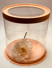 "Load image into Gallery viewer, See through clear round Cake box- 8.5""Diameter x 9""Height"
