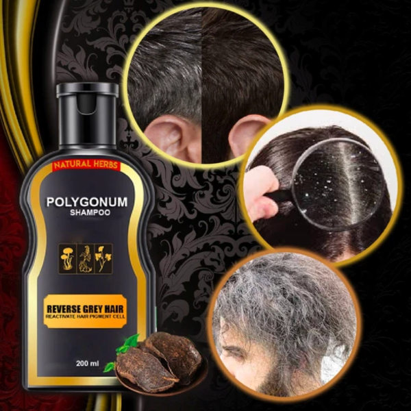 Reverse Gray Hair Darkening Shampoo