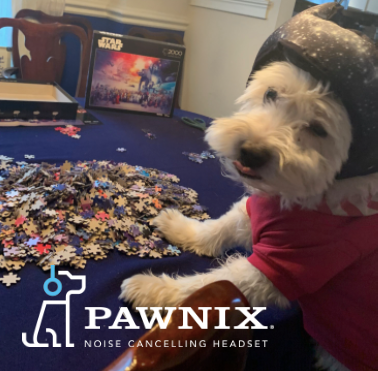 PUPPERS, PUZZLES and PAWNIX