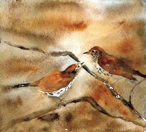 Songbirds, Hummingbirds, Water Birds - Limited Edition Prints