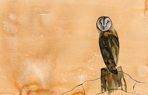 Barn Owl Fencepost - Original Painting