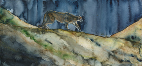 Cougar Almost Home - Limited Edition Print