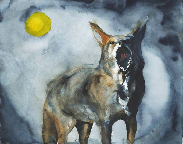 Coyote Moon - Limited Edition Print