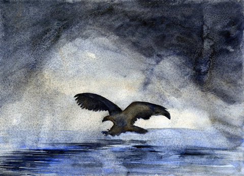 Eagle Morning - Fishing - Signed, Limited Edition Print