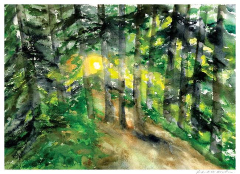 Forest Clearing- Limited Edition Print